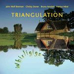 Triangulation cover