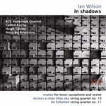 In shadows cover